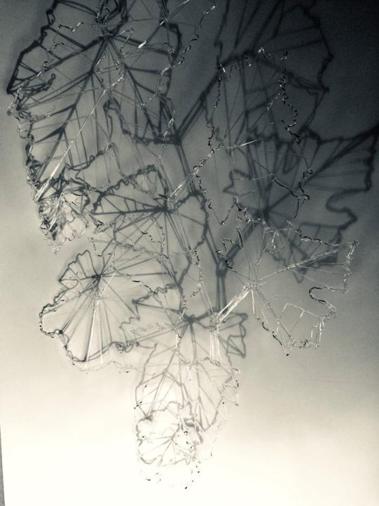 3D drawing leaf
